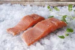 Fersk fisk