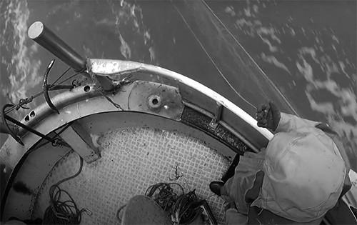 Fisk til døren fra dansk hav